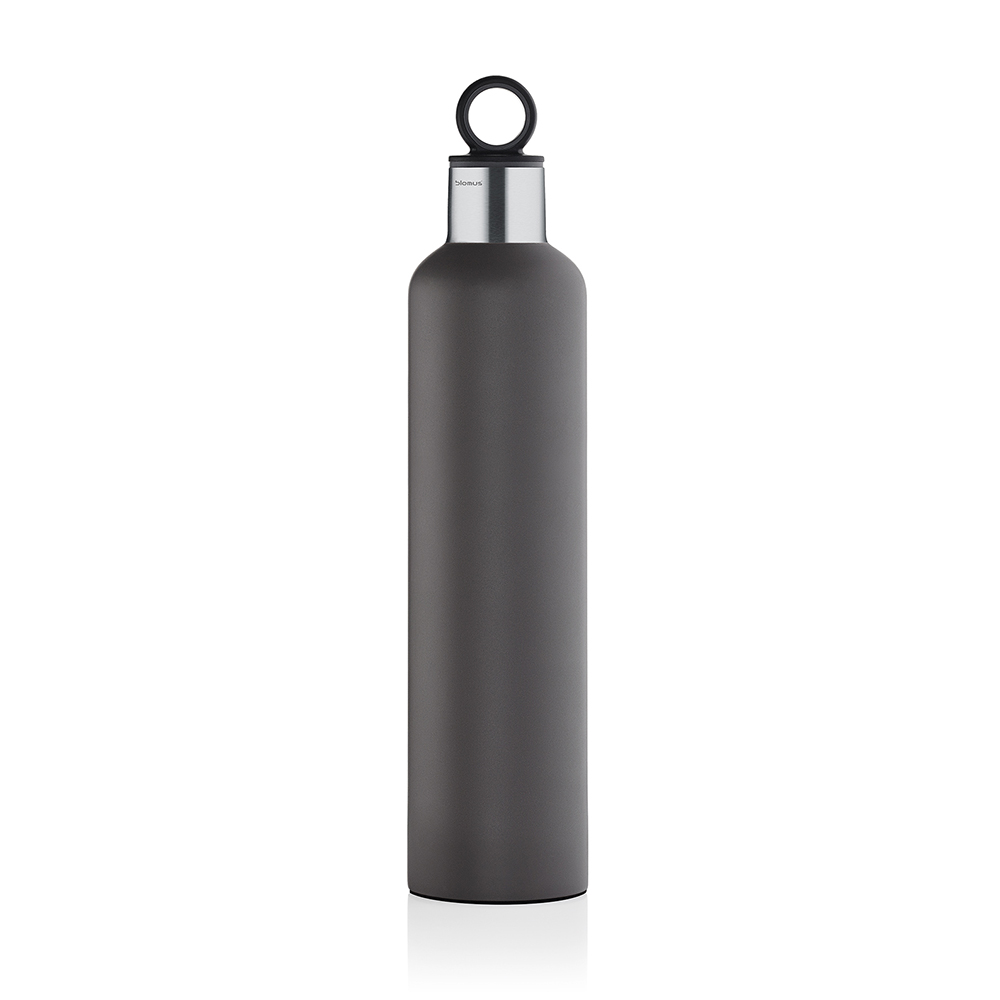 2GO Thermo Bottle 0,75L, Grey
