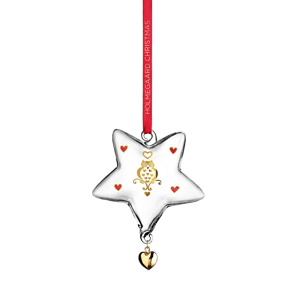 Annual Christmas Star 2014
