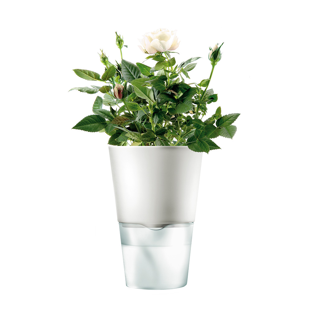 玻璃花盆图案手绘